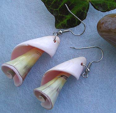 Wholesale seashell jewelry, spiral pattern design fashion seashell earring with fish hook back